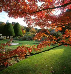 Malleny garden nts