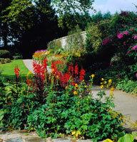 Threave garden nts