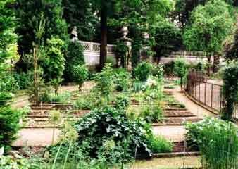 Padua orto botanico