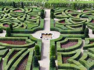 Villandry garden2