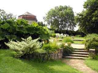 Botanical garden vienna