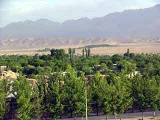 Shahzadeh garden2