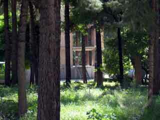 Chehel sotun garden2