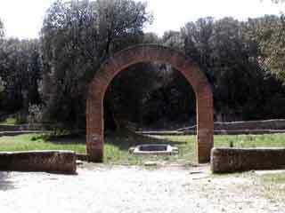 Villa pliny garden
