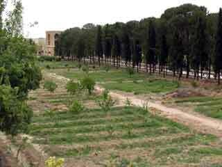 Dolatabad garden1