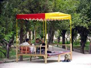 Dolatabad garden2