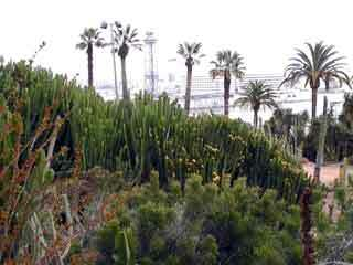 Costa i llobera garden