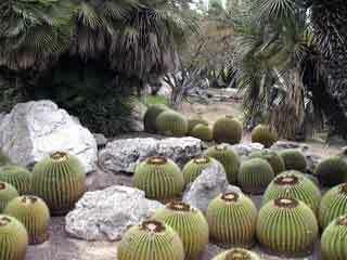 Jardins de mossen