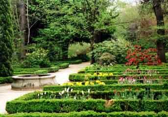 Madrid botanical garden real jardin botanico for Jardin botanico madrid conciertos