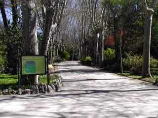 Campo del moro2