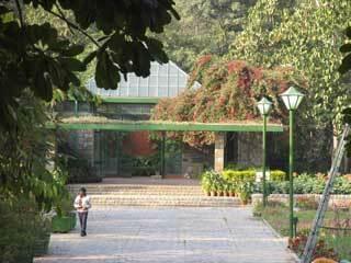 Lodi garden2