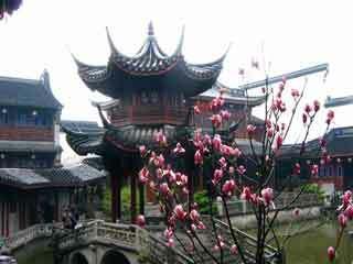 Hu xue yan garden2
