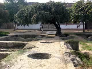 Shalamar bagh delhi1