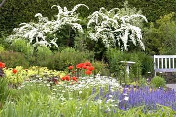 Kingsbrae garden2