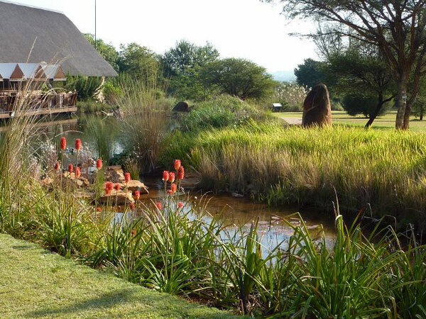 Wetland, Pretoria NBG
