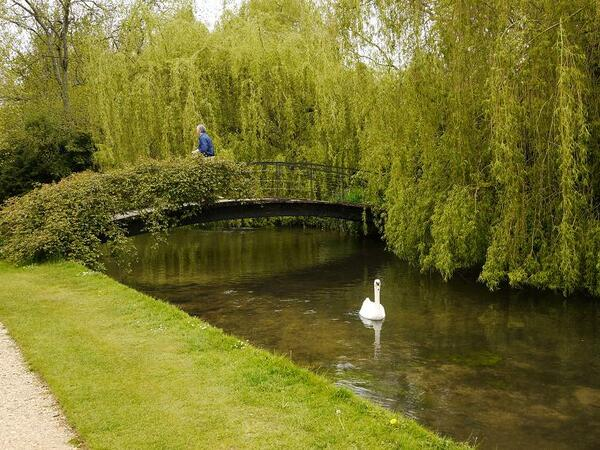 Bridge, Mottisfont Abbey