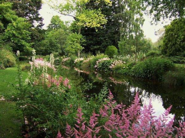 Gooderstone Water Gardens