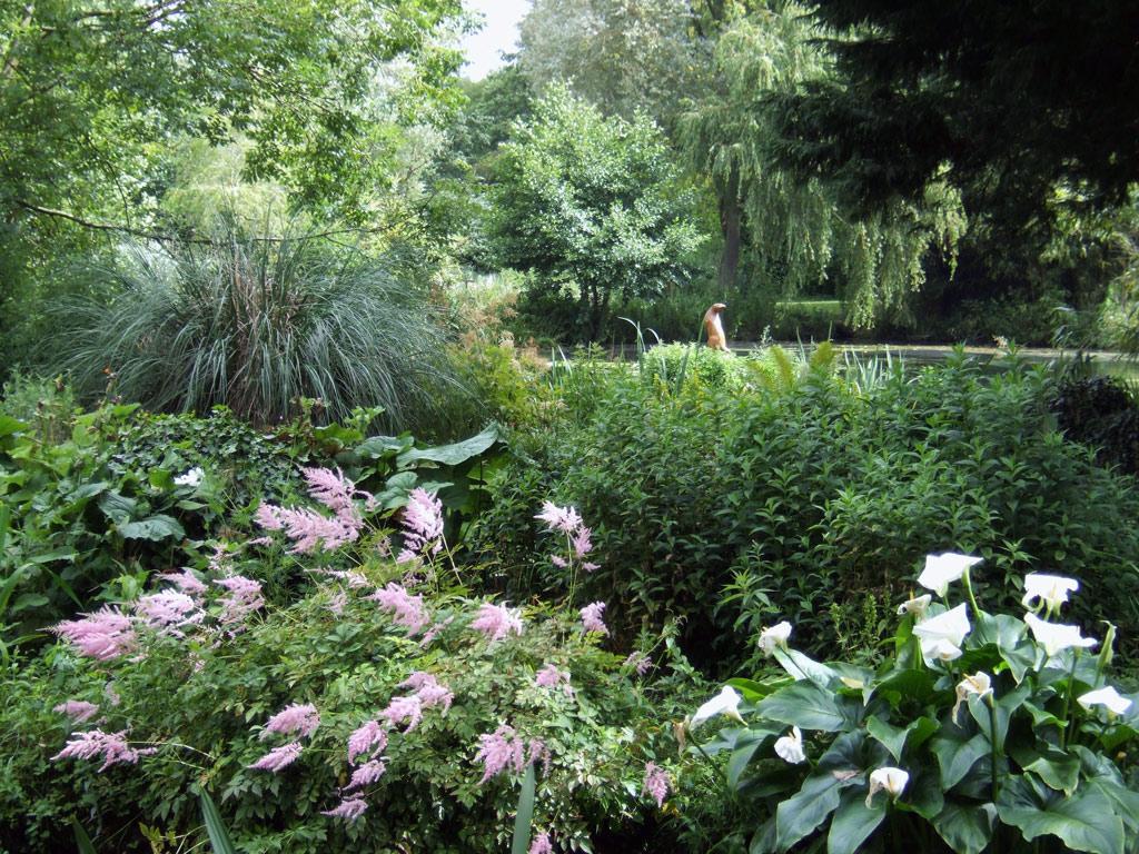 Water Gardens: Gooderstone Water Gardens
