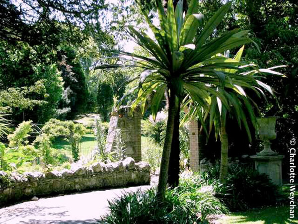 Ventnor Botanic Garden, 2010