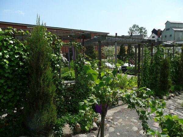 Bla Huset Garden