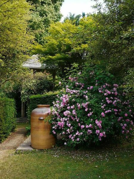 Gibberd Garden, July