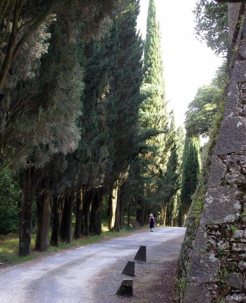 Castello di Brolio, Siena