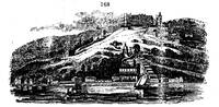 Medium gardening encyclopedia 525 168 original