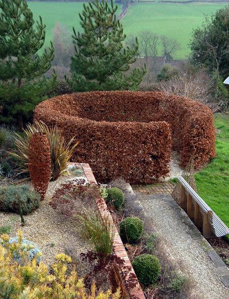 Special Plants Garden – Plants for a Garden