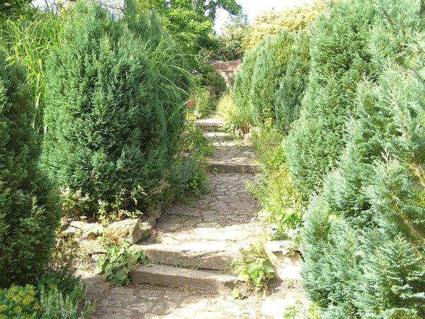 Path, East Lambrook Manor