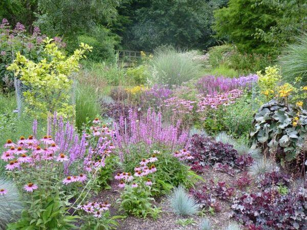 Bressingham Garden, August