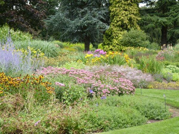 Bressingham Garden, August 2010