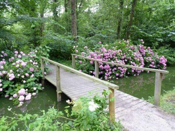 Bridge, Fairhaven Garden