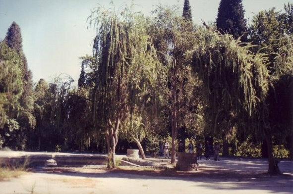 Nimla Gardens, 1988