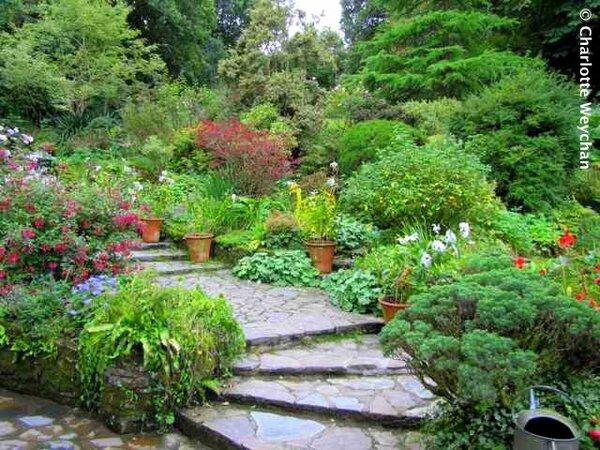 Docton Mill Garden, Devon