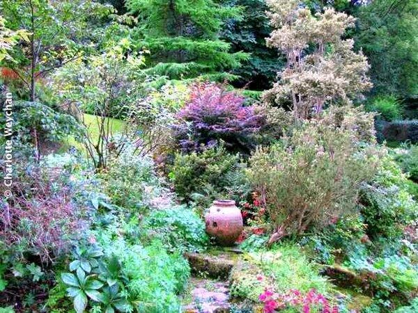 Docton Mill Garden, Lymebridge