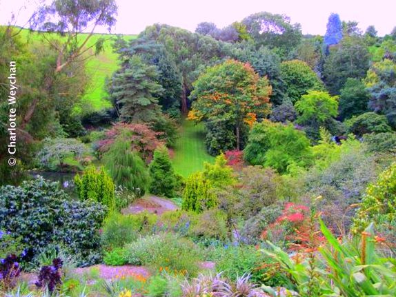 Marwood Hill Garden, September