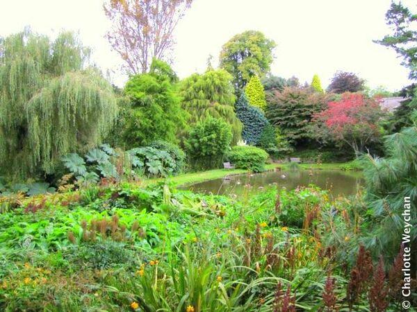 Marwood Hill Garden, September 2010