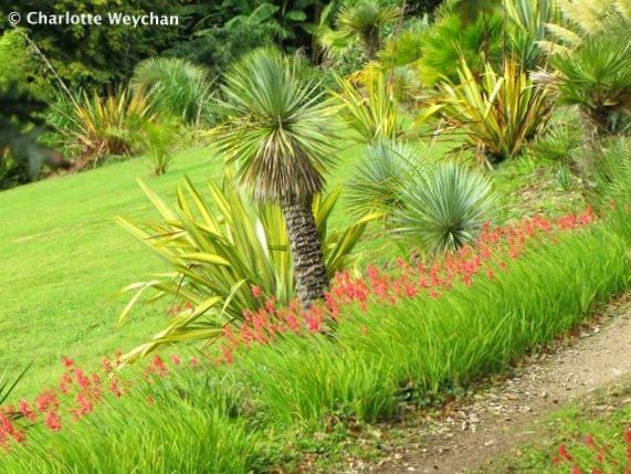 Tremenheere Sculpture Gardens, Penzance