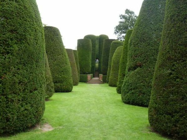 Packwood House Garden, 2010