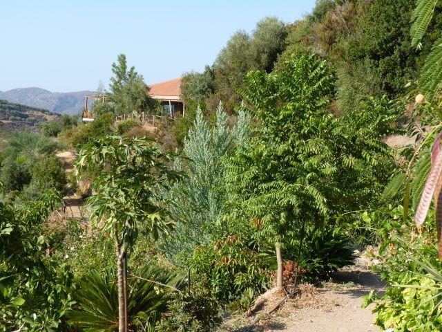 Botanical Garden of Crete