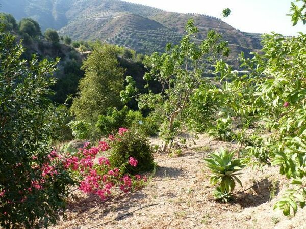 Botanical Garden of Crete, Greece