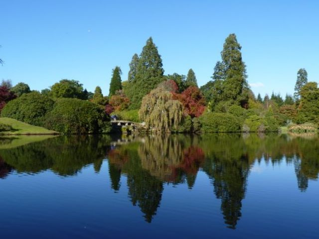 Sheffield Park, October