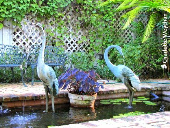 Pond, Audubon Gardens