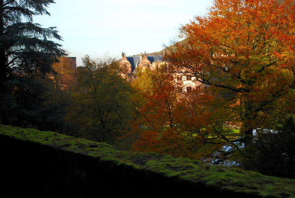 Heidelberg Schlossgarten, Autumn